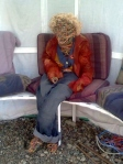 haywire in the gazebo summer